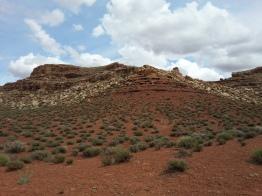 Unique landscape of Navajo Reservation