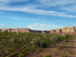 Awesome red rock cliffs and free roaming cows.